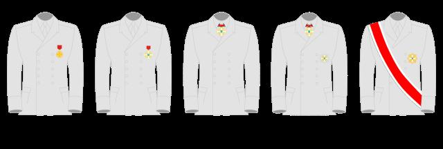 OCT insignia